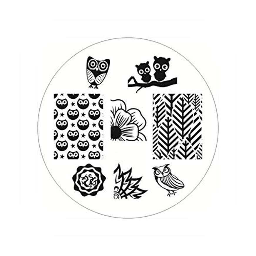 大破カテナおもしろい生まれたかわいい長方形のネイルスタンピングプレートラインネイルアートイメージスタンプテンプレートステンシル芸術的な夏のテーマ,BP54