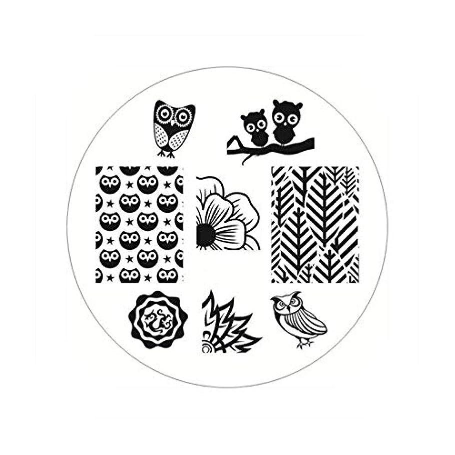 ハウジング出版タイプライター生まれたかわいい長方形のネイルスタンピングプレートラインネイルアートイメージスタンプテンプレートステンシル芸術的な夏のテーマ,BP54