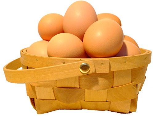 農家直送!たまご 北海道発、平飼いで育てた純国産鶏の有精卵 36個+割れ保証4個(1個あたり41円)