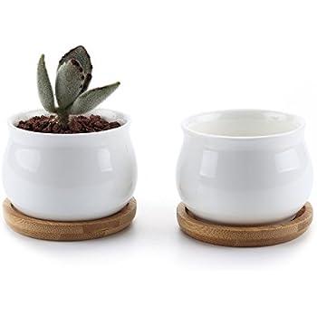 T4U 7 陶器鉢 白 ジャーシェイプデザイン 植木鉢 多肉植物 サボテン鉢 花鉢 容器 プランター 2個入り
