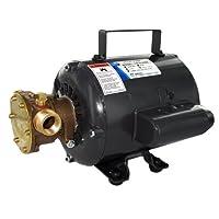 "Jabsco 11810-0003 Marine Series General Purpose Utility Pump (Nitrile Impeller, Open Drip Proof Motor Non CE, 115-Volt, 1/2"" NPT Ports) [並行輸入品]"