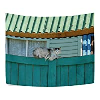 GORIRA(ゴリラ) タペストリー インテリア 壁掛け 和風 おしゃれ 絵画 かわいい ねこ 猫柄 ハウス 絵 パーティー 部屋 窓 トップ飾り 個性 家庭飾り 多機能 装飾用品 約幅152x130cm