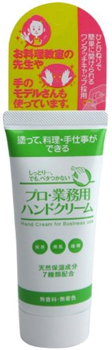 プロ業務用ハンドクリーム60g