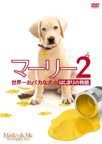 マーリー2 世界一おバカな犬のはじまりの物語 [DVD]の詳細を見る