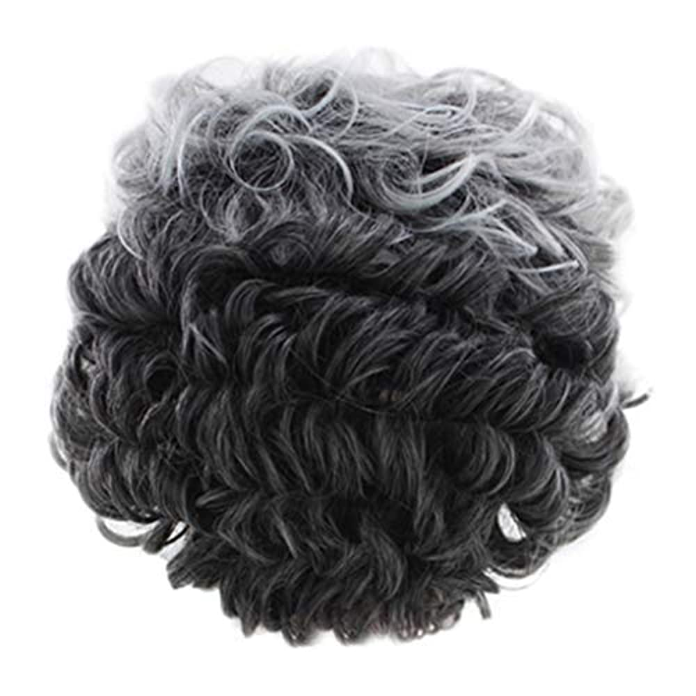 ホールワードローブ不十分女性のかつらグレー短い巻き毛のファッションセクシーなかつらローズネット