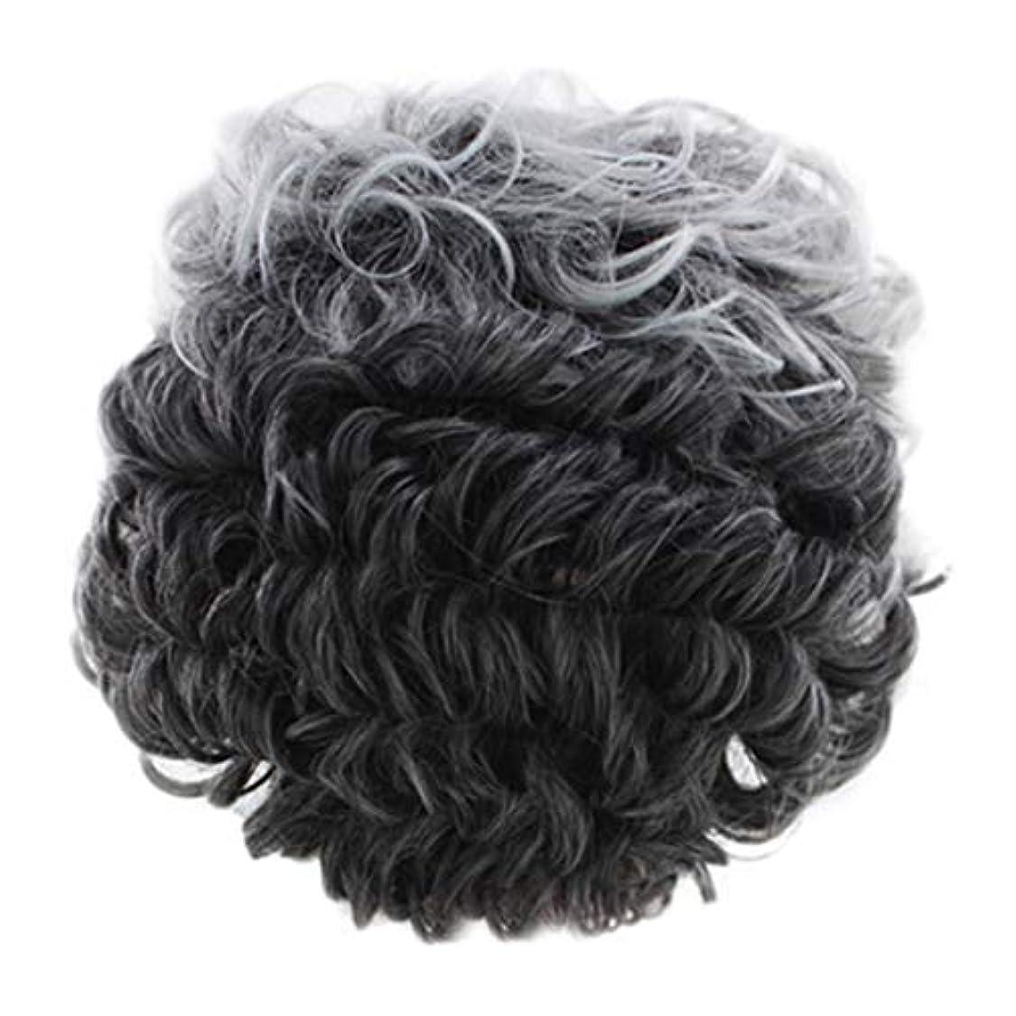 女性のかつらグレー短い巻き毛のファッションセクシーなかつらローズネット