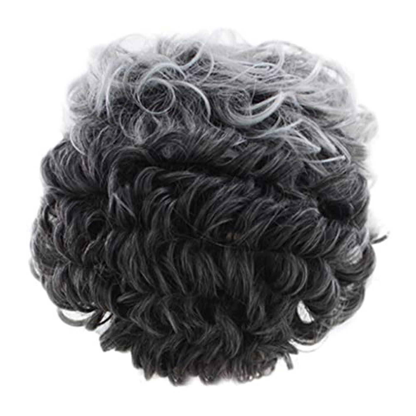 青写真減る個人的な女性のかつらグレー短い巻き毛のファッションセクシーなかつらローズネット
