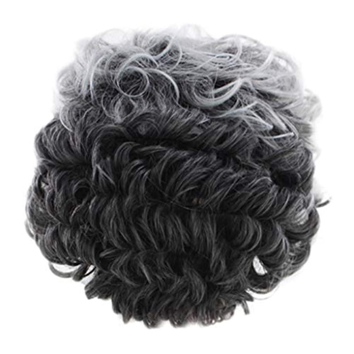 カレンダーからに変化するクラフト女性のかつらグレー短い巻き毛のファッションセクシーなかつらローズネット