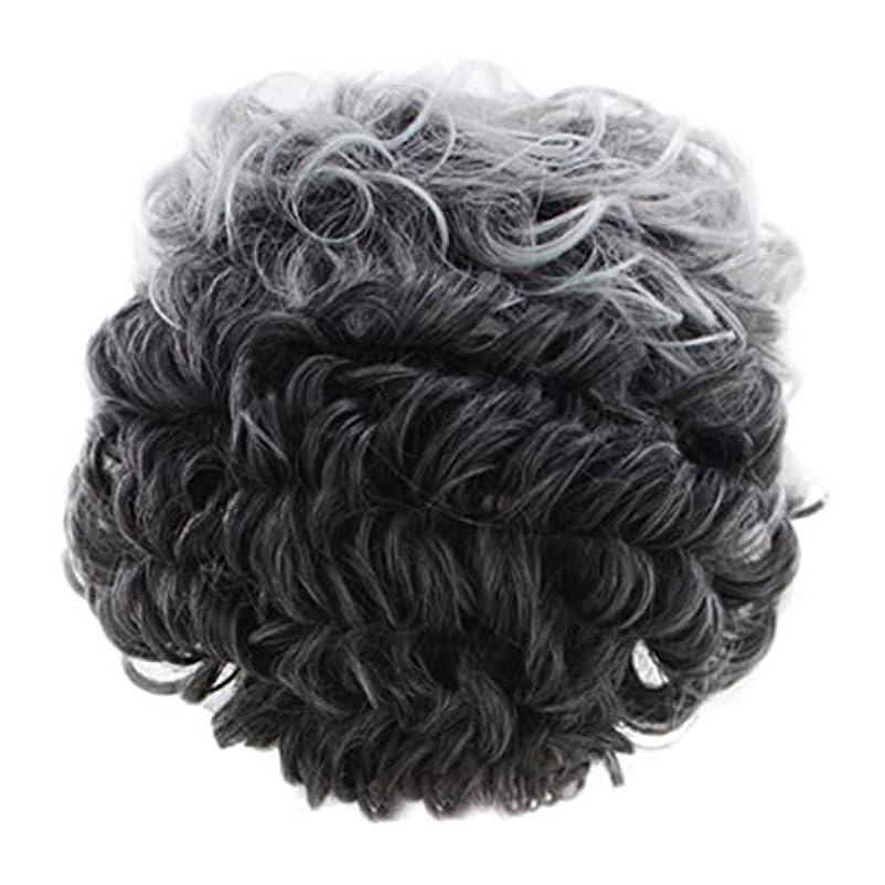 ウイルスエアコン赤女性のかつらグレー短い巻き毛のファッションセクシーなかつらローズネット