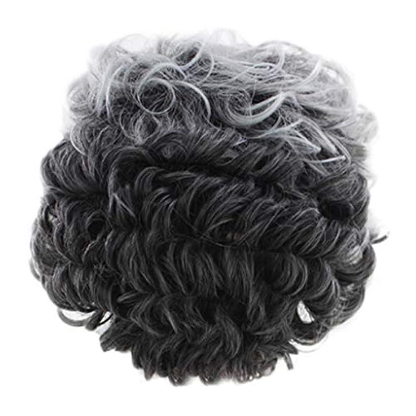 逸話位置する旧正月女性のかつらグレー短い巻き毛のファッションセクシーなかつらローズネット