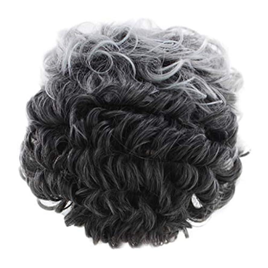 マチュピチュ南極パノラマ女性のかつらグレー短い巻き毛のファッションセクシーなかつらローズネット