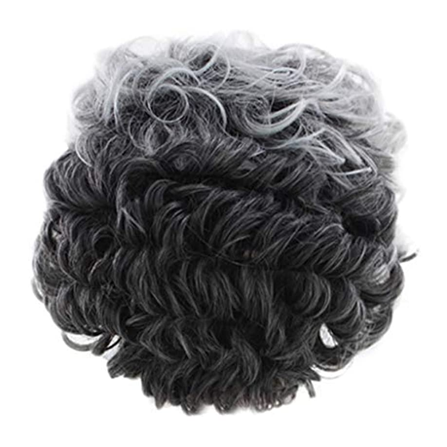 落花生恵み解き明かす女性のかつらグレー短い巻き毛のファッションセクシーなかつらローズネット