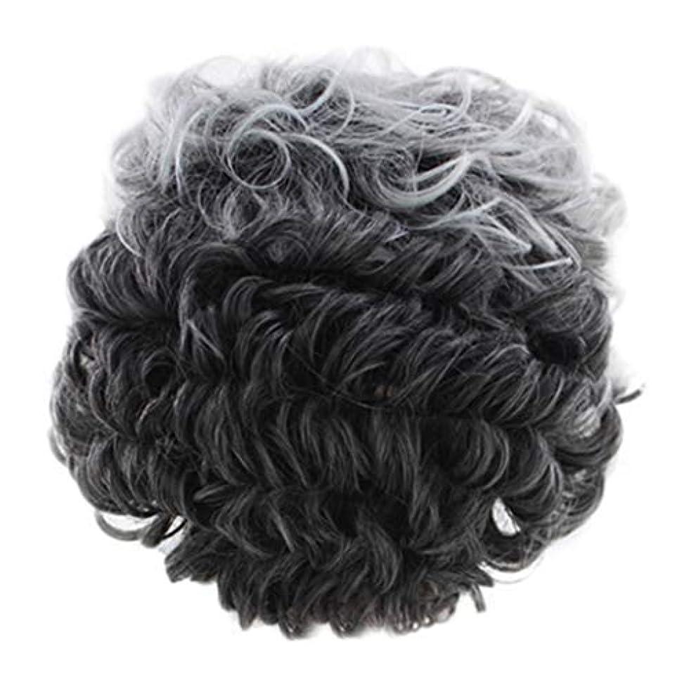 普通の蒸留するマニュアル女性のかつらグレー短い巻き毛のファッションセクシーなかつらローズネット