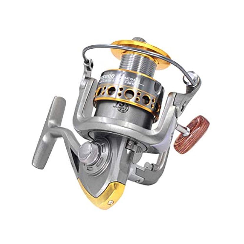 事前に期限ビジョンVORCOOL 海水または淡水釣りのための13軸釣りリールアルミニウム紡績釣りリール(グレー2000)