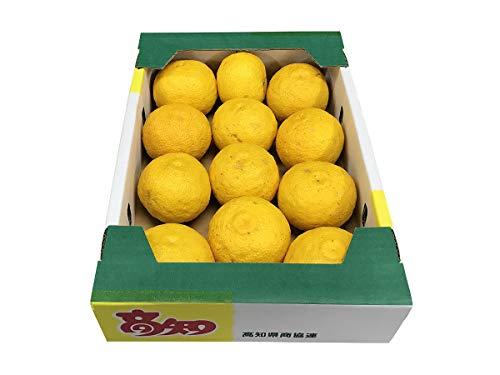 高知県産 黄色ゆず 10~15玉入り 約1.3kg(化粧箱)