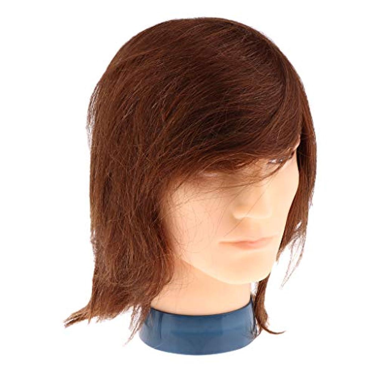 エンジン彼女の八T TOOYFUL マネキンヘッド ディスプレイ スタンド ウィッグ 男性 人間の髪の毛 ヘアプラクティスヘッド 全2色 - 褐色