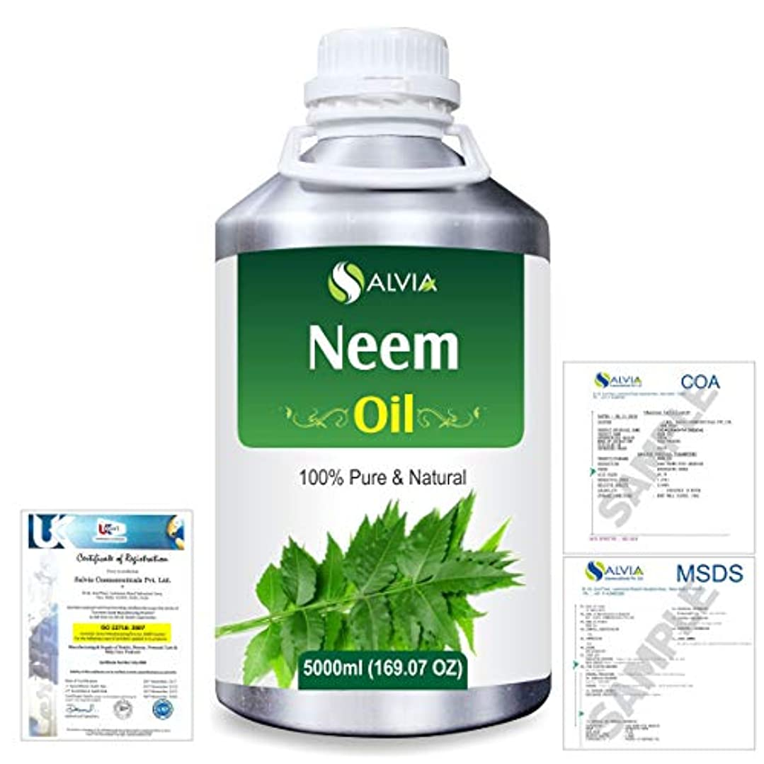 分析フライカイト落ち着いたNeem (Azadirachta indica) 100% Natural Pure Essential Oil 5000ml/169fl.oz.