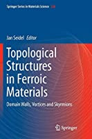 Topological Structures in Ferroic Materials: Domain Walls, Vortices and Skyrmions (Springer Series in Materials Science)