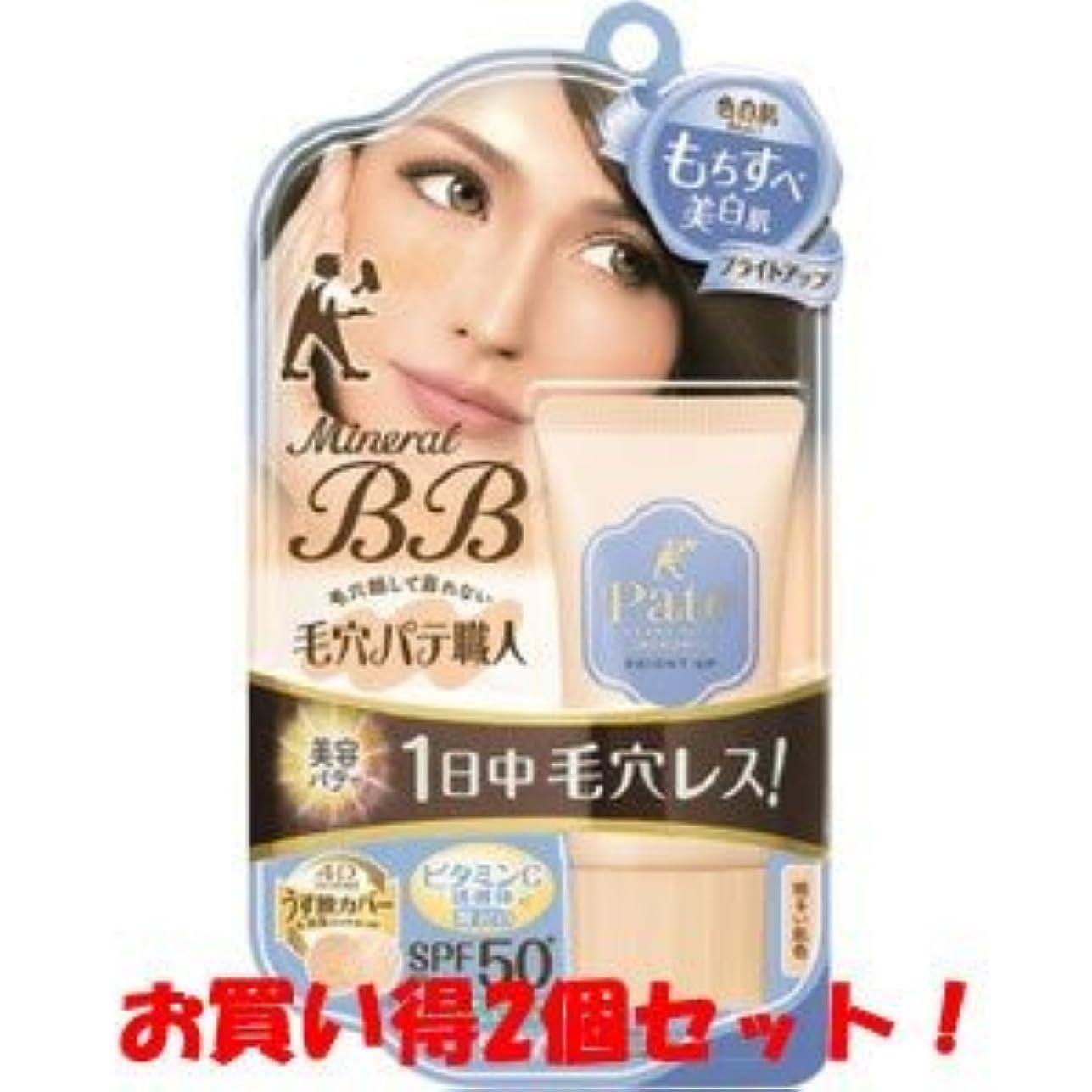 酸素させるカーフサナ(SANA)毛穴パテ職人 ミネラルBBクリーム ブライトアップ 20g/新商品/(お買い得2個セット)