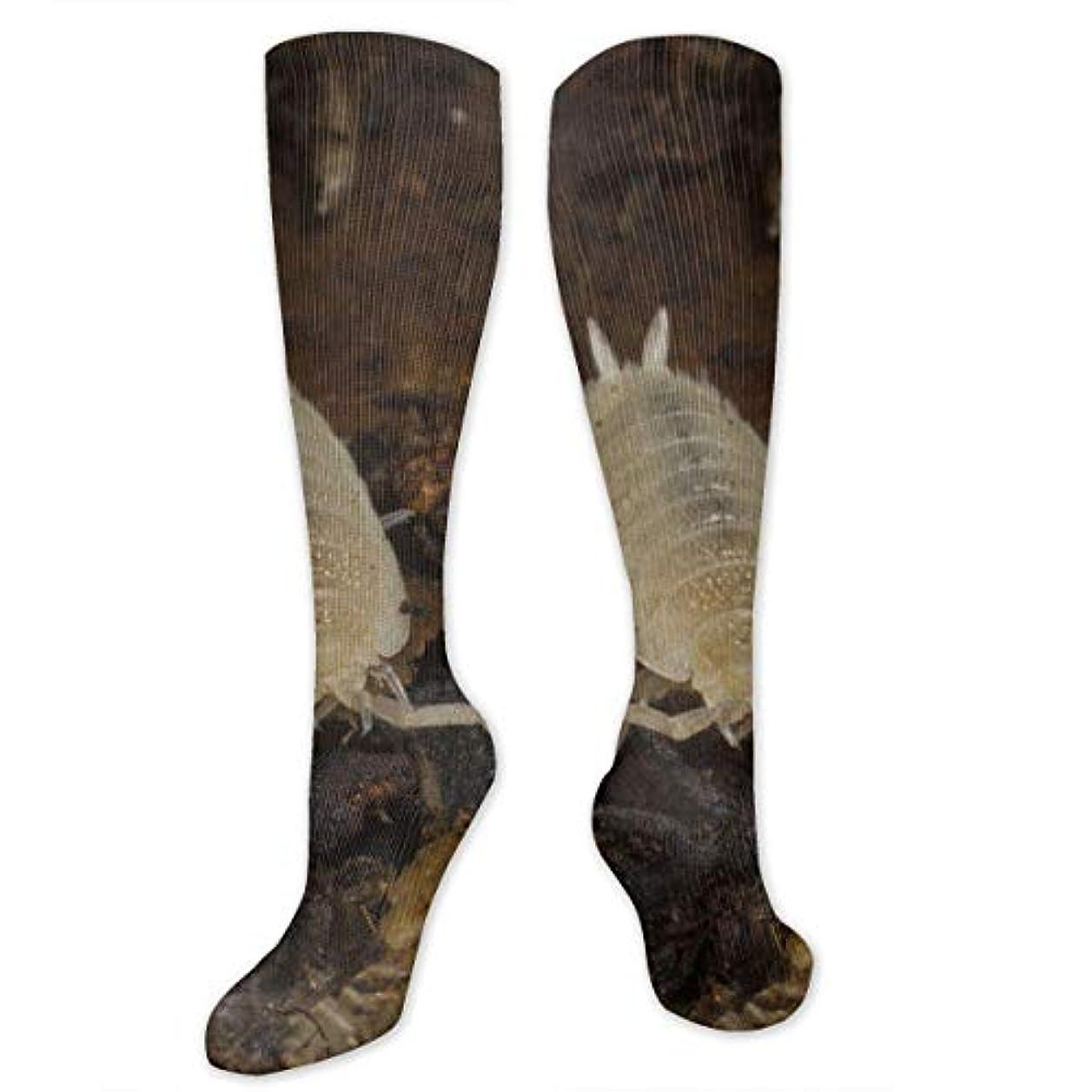 漁師帝国主義シャイクリスマスの靴下ファニー南Chaetiliidノンスリップ家庭の床の靴下冬居心地の良いスリッパソックス