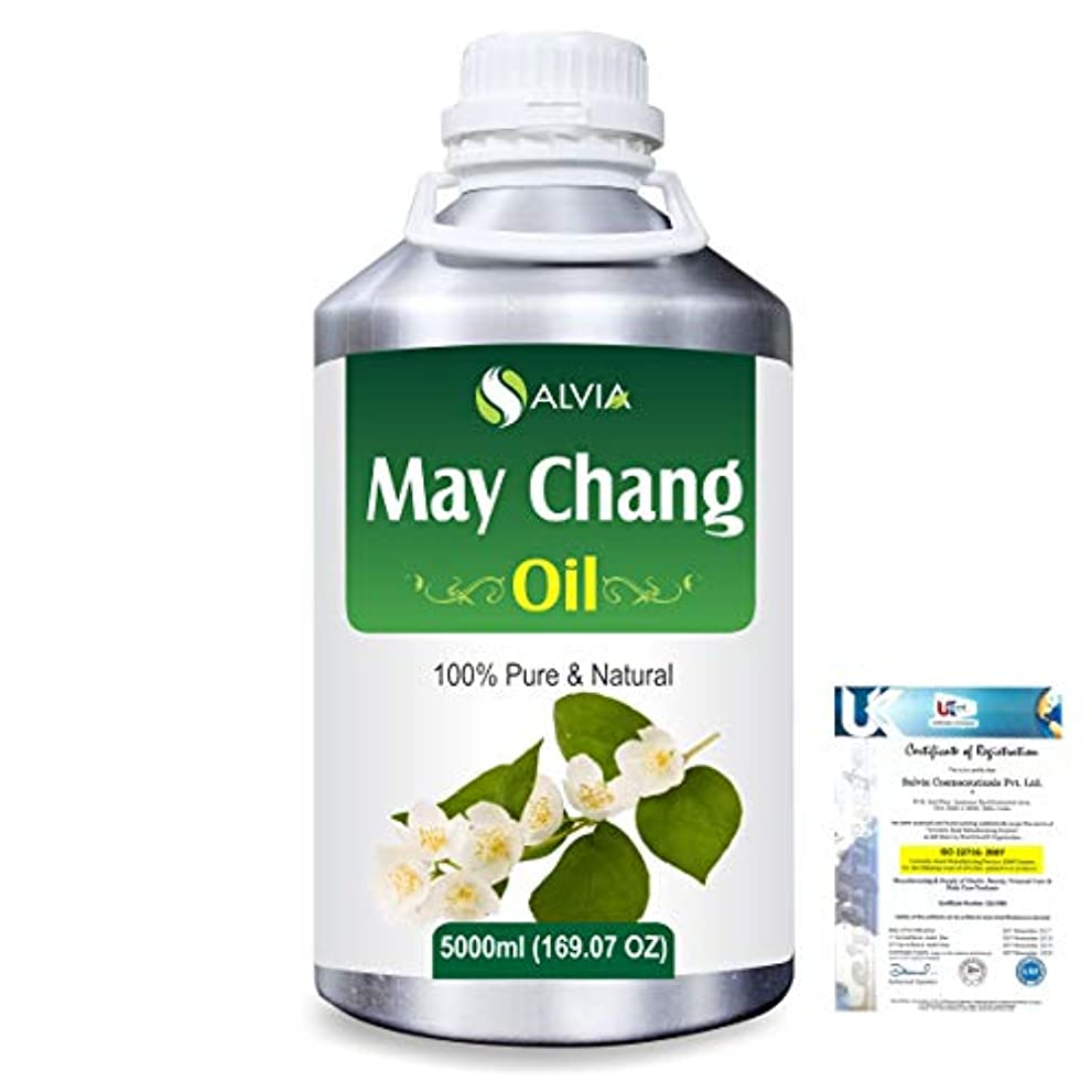 オーバードロー奨励します卑しいMay Chang (Litsea Cubeba)100% Natural Pure Essential Oil 5000ml/169fl.oz.