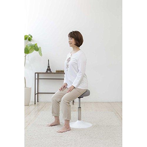 MIZUNO(ミズノ)健康用具トレーニング椅子スクワットスリールC3JHI80255ブラウン