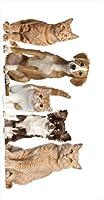 ポスター ウォールステッカー 長方形 シール式ステッカー 飾り 90×47cm Lsize 壁 インテリア おしゃれ 剥がせる wall sticker poster アニマル 犬 猫 動物 写真 002789