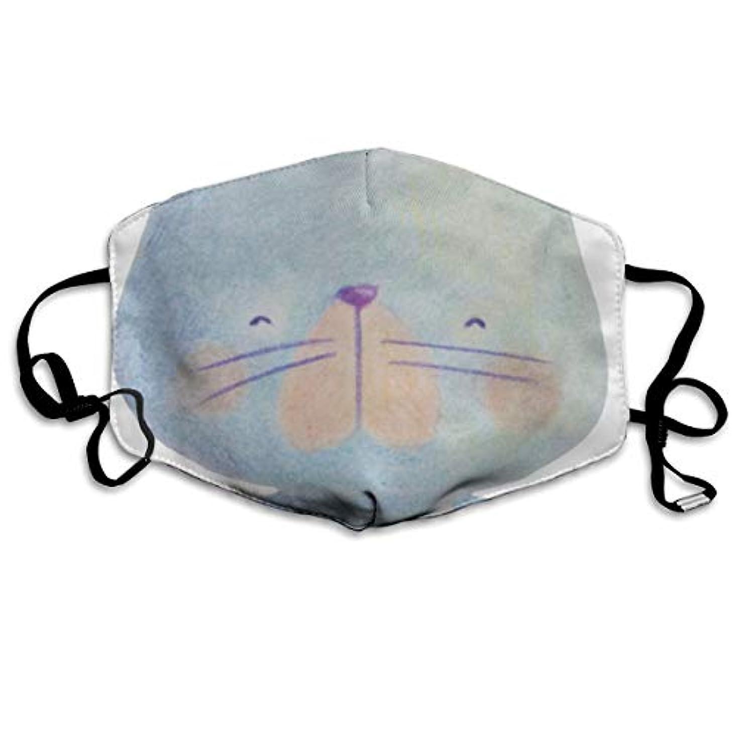ペイン見せます召喚する一の楽 マスク夏用 風邪 花粉症対策 繰り返し使用可能 洗える おしゃれ 男女兼用 猫 バレリーナ