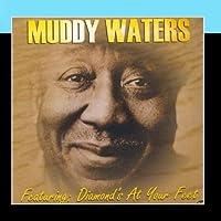 Muddy Waters【CD】 [並行輸入品]