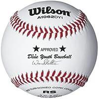 Raised Seam Dixie Youth Baseballsからウィルソン – ケースof 10ダース