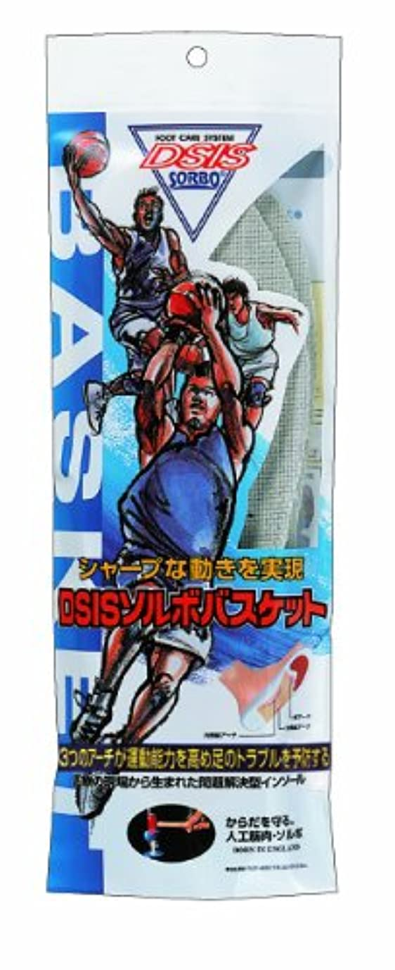 船尾イブ結果DSISソルボバスケット Sサイズ(23.5~24.5cm)グレー