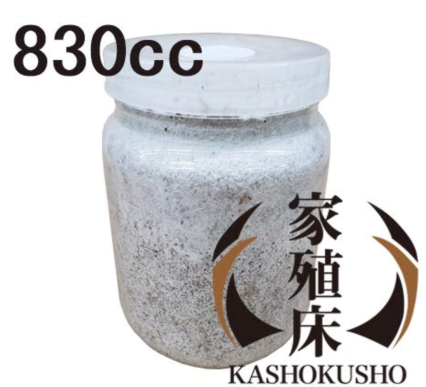コンテスト西部パースブラックボロウ菌糸瓶 830cc 家殖床クラシック 1本