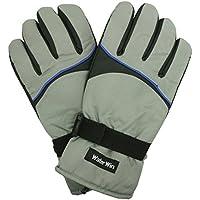 スキーグローブ メンズ スキー 手袋 大人用 スノーグローブ W2510-12