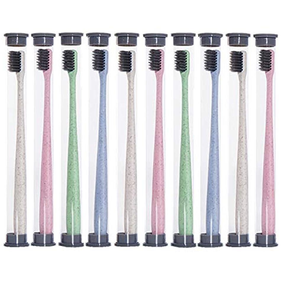 決定する主流ミケランジェロ歯ブラシ 麦わら歯ブラシ、旅行携帯用歯ブラシ、ミディアムブラシヘッドソフト歯ブラシ - 10パック KHL (色 : 10 packs)