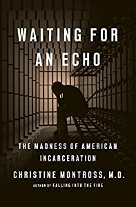 Waiting for an Echo: The Madness of American Incarceration (English Edition)