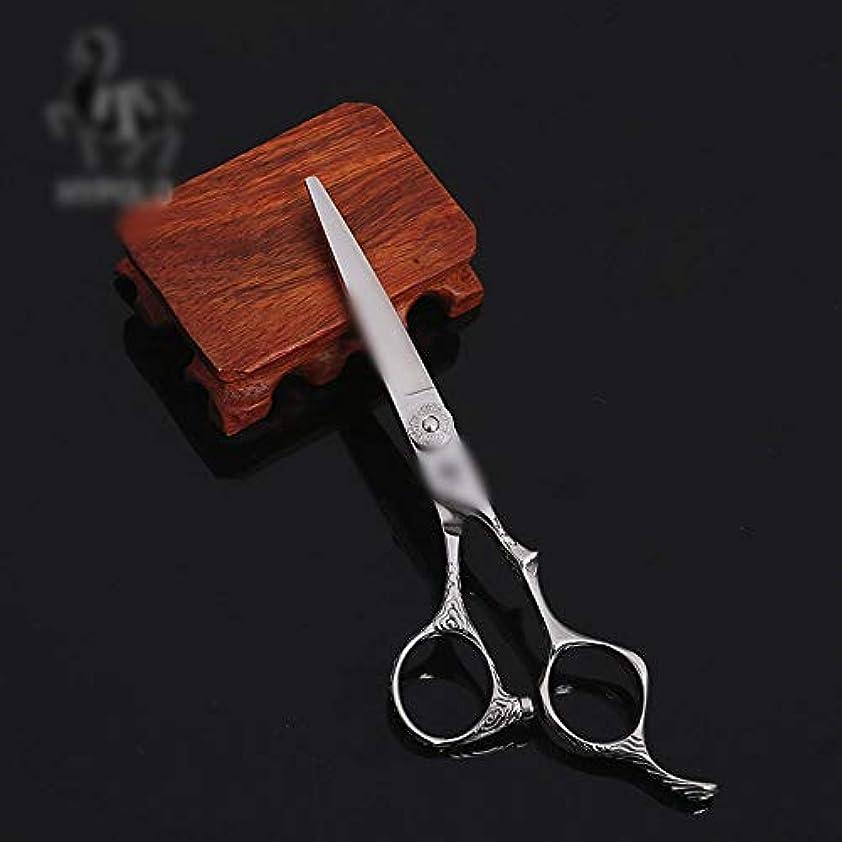 特異なくしゃみけん引6インチの美容院の専門の理髪はさみの平らなはさみ、ハイエンドの専門の理髪用具の平らなはさみ ヘアケア (色 : Silver)