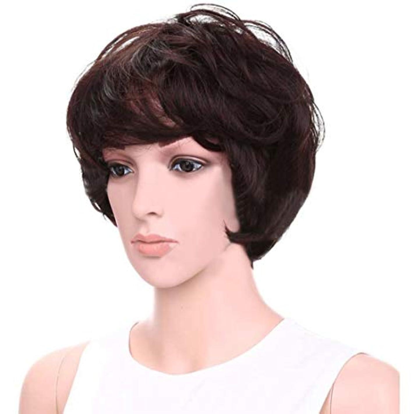 経由で経歴色合いYOUQIU エア?フラッツ前髪髪の耐熱ウィッグでパーソナリティかつら女性のショートヘアウィッグふわふわ8インチ(ダークブラウン)かつら (色 : Dark brown)