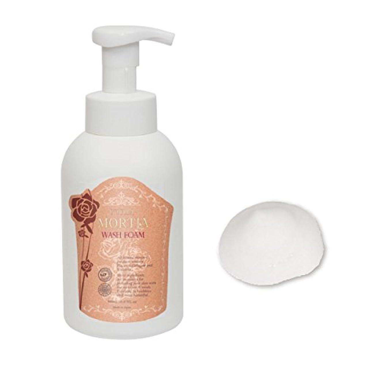 上がる泥棒追い出すエトゥベラ モルティア ウォッシュフォーム 500ml (リンゴ幹細胞 洗顔フォーム 天然水 化粧品)