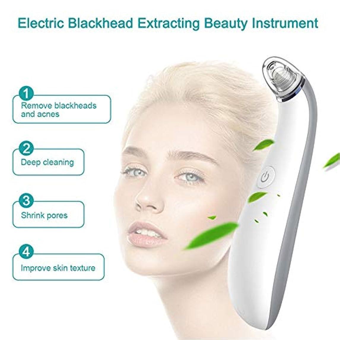 キャロラインパンフレット夜間気孔の真空の深くきれいな、皮膚健康のための電気顔の安定した吸引のスキンケア用具4取り替え可能な吸引の頭部USB再充電可能