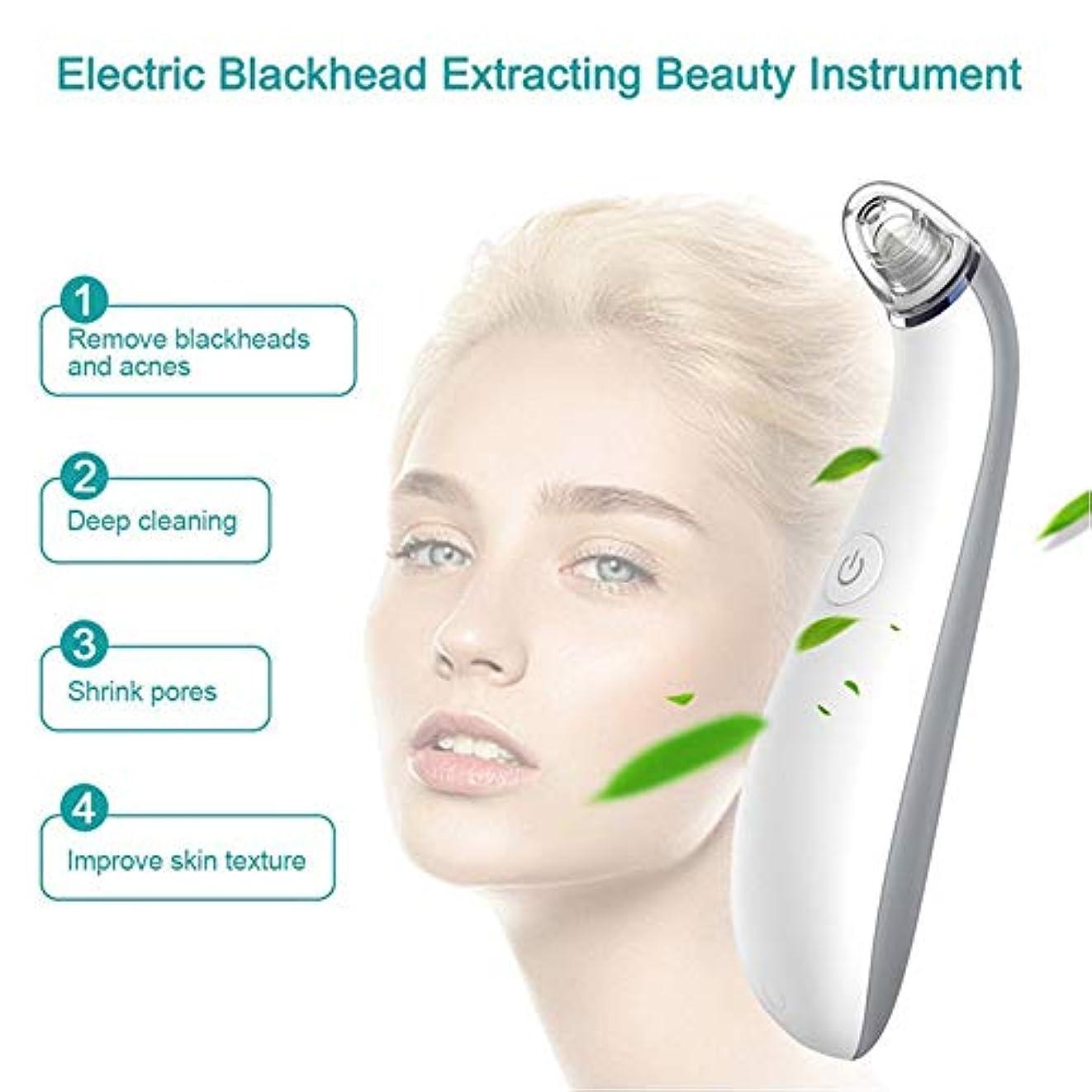 びんスペース改修する気孔の真空の深くきれいな、皮膚健康のための電気顔の安定した吸引のスキンケア用具4取り替え可能な吸引の頭部USB再充電可能