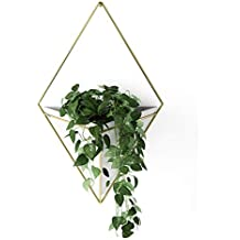 Umbra Trigg Hanging Planter Vase & Geometric Wall Decor Container - Great for Succulent Plants, Air Plant, Mini Cactus, Faux Plants and More, White Ceramic/Brass Decor