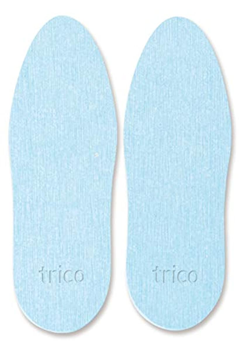 教育呼び起こす組み込むtrico 靴の消臭 珪藻土 シューズドライプレート ブルー CTZ-18-02