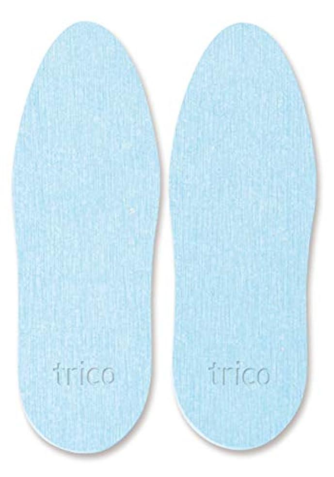 ドア面積葉を集めるtrico 靴の消臭 珪藻土 シューズドライプレート ブルー CTZ-18-02
