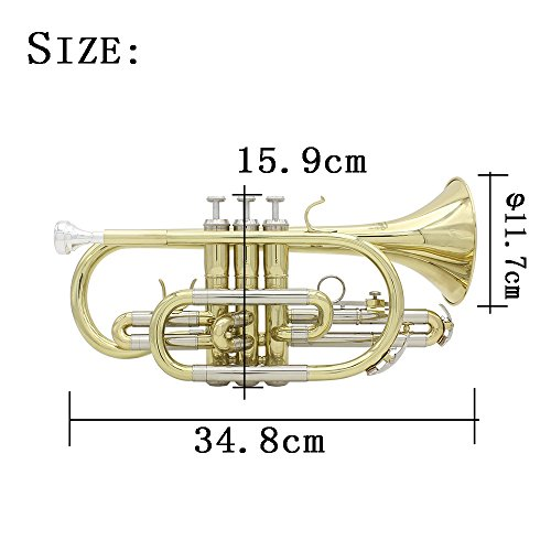 ammoon 7点セット B Bbフラット コルネット管楽器 ハードケース付き初心者入門セットゴールドラッカー仕上げ 真鍮製