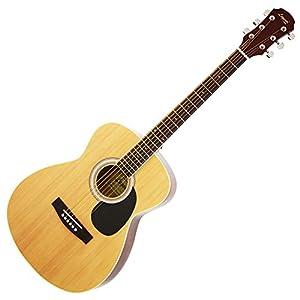 Legend レジェンド アコースティックギター ケース付き FG-15(A) N