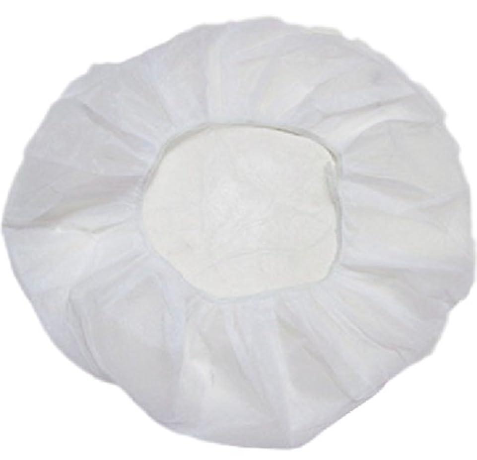 痴漢本当のことを言うとフラスコ業務用 不織布 ヘアキャップ 使い捨て 衛生 食品 加工 工場 大きめ (100個, 白)
