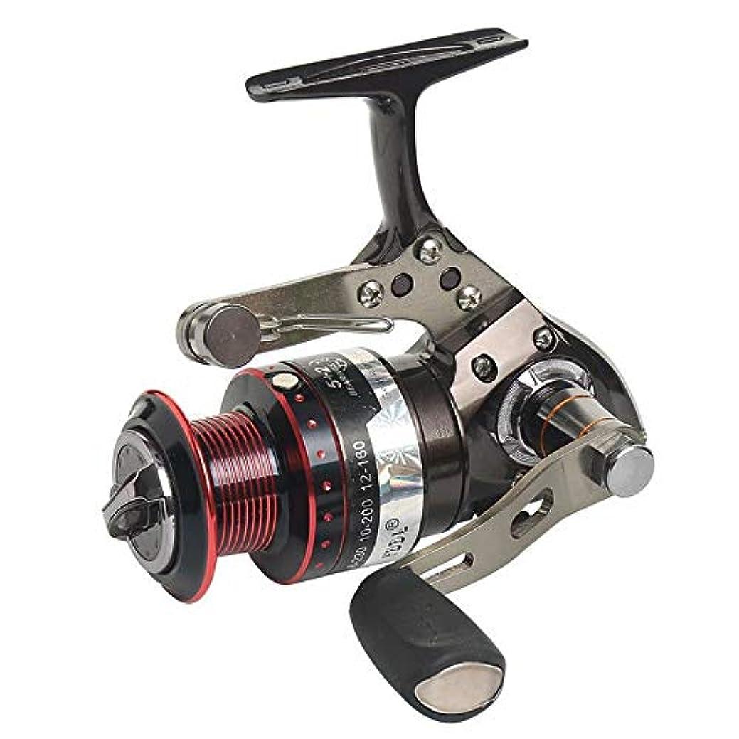 実際のマウスカレンダーCLAUDIAR ギャップ回転ホイールなし釣り用リール釣り用リール鯛用ホイール (Size : 3000)