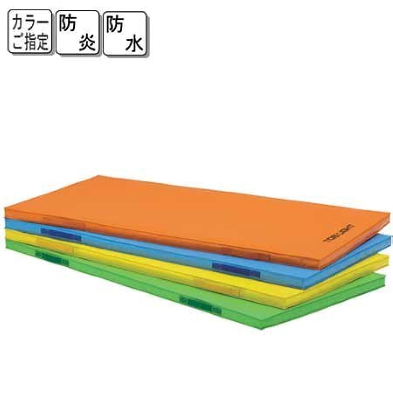 TOEI LIGHT(トーエイライト) 屋内外兼用防水型マット 緑 T2529G