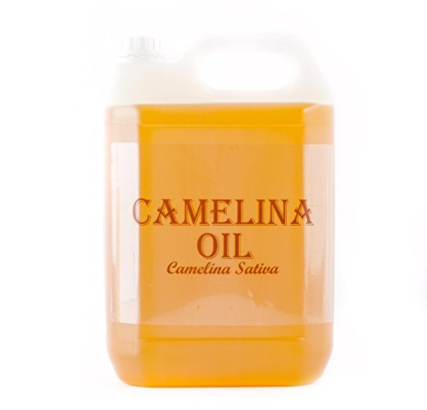 誇張するインゲン座るMystic Moments | Camelina Virgin Carrier Oil - 5 Litres - 100% Pure