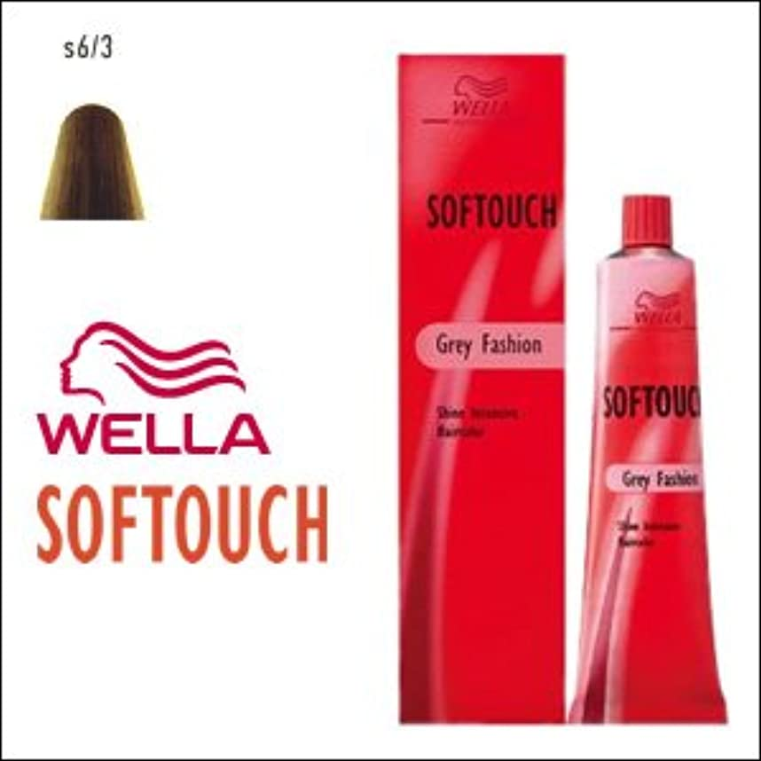 食い違い処方衰えるウエラ ヘアカラー ソフタッチ S6/3 60g